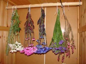Decoracion Con Flores Secas Tip Del Dia Decora Ilumina - Decorar-con-flores-secas