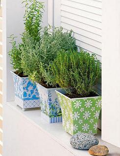 Consejos para cultivar plantas arom ticas jardin decora ilumina - Plantas aromaticas jardin ...