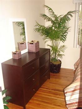 Qu tipos de plantas colocar en casa seg n el feng shui for Que tipo de espacio debe tener una oficina