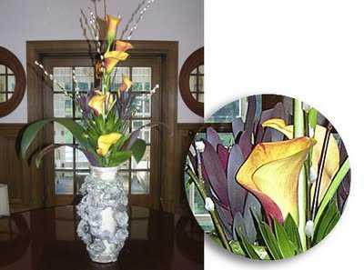 flores sala