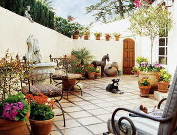 Opciones de plantas para patios peque os jardin decora for Ideas para decorar un patio exterior
