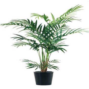 Ventajas de tener plantas artificiales para la casa tip for Plantas decorativas de plastico