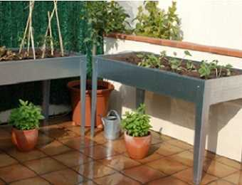 Crea un peque o huerto en casa o apartamento te for Decorar jardin pequeno frente casa