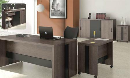 Dise os de escritorios ejecutivos oficina decora ilumina for Disenos de escritorios para oficina