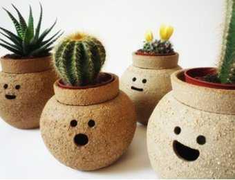 Novedades en plantas y macetas para el interior de las for Departamentos decorados con plantas
