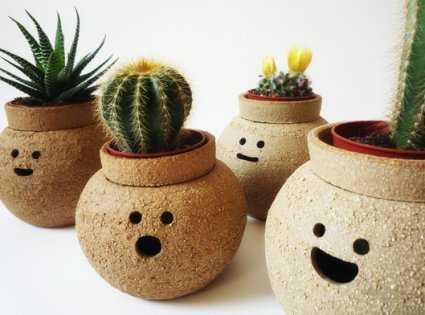 Novedades en plantas y macetas para el interior de las casas | Sala ...