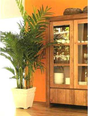 C mo decorar con plantas artificiales tu casa tip del for Casas decoradas con plantas naturales