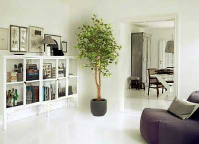 C mo decorar con plantas artificiales tu casa tip del for Casas decoradas con plantas de interior