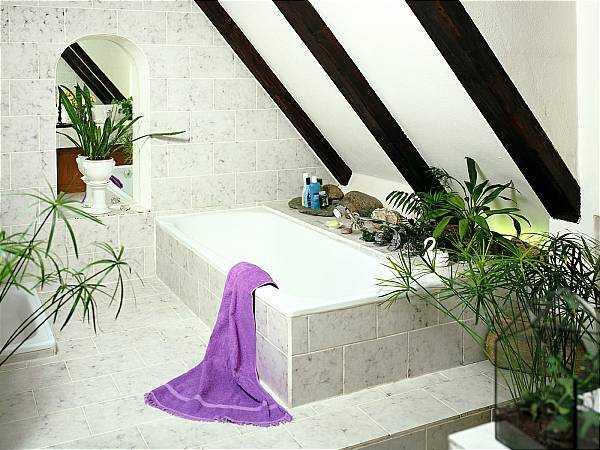 Baños Elegantes Con Tina:Decoración de baños para casa: tinas y jacuzzis 2012